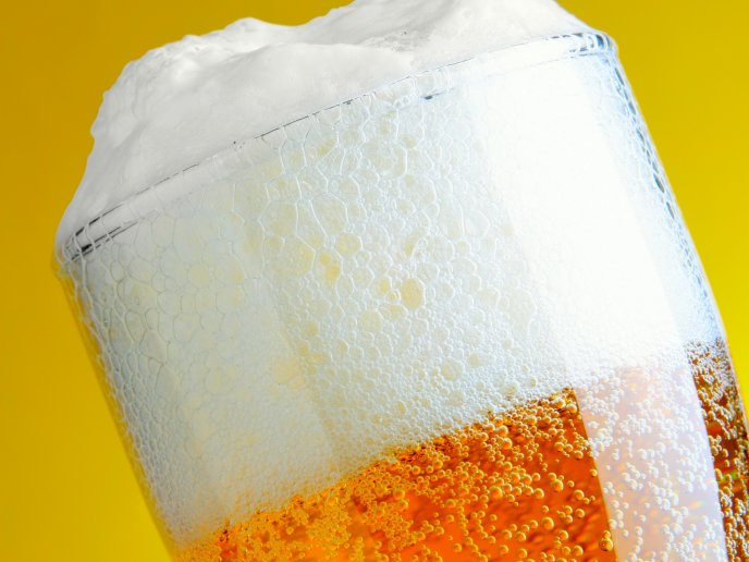 3628_Perfect-white-beer-foam-HD-wallpaper