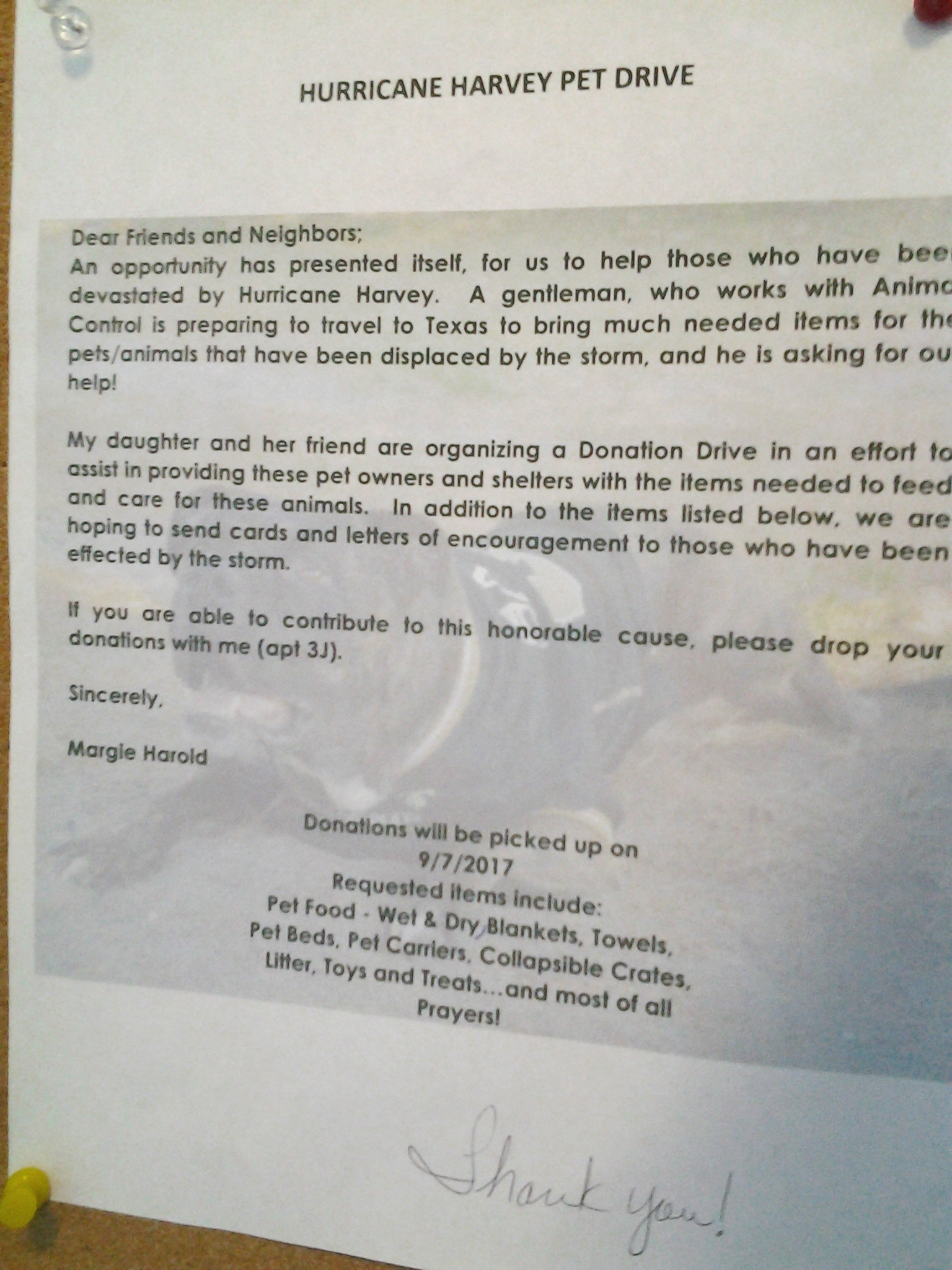 Common sense for belmar pets need help too for Common sense for belmar